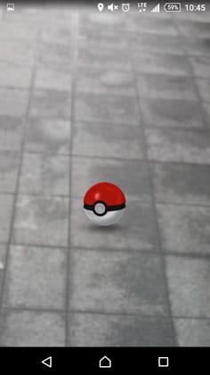 Pokémon GO(ポケモンGO):ポケモン、ゲットだぜ!