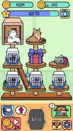 新たな猫用のケージでスペースがいっぱいだ!
