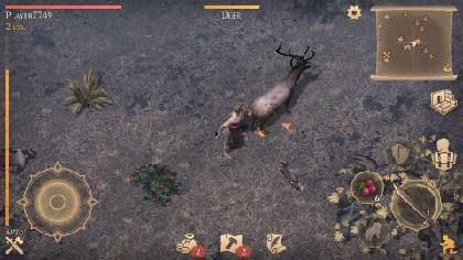 お肉を求めて狩りの時間!