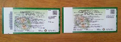 発券された2枚のチケット。ボカしているのはQRコードやID、パスワードだ