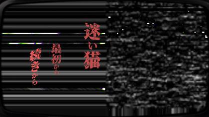 迷い猫、母猫ヲ捜ス旅_11.jpg