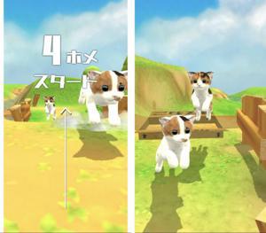 子猫たちの自由なアクションをみながらのタップアクション.jpg