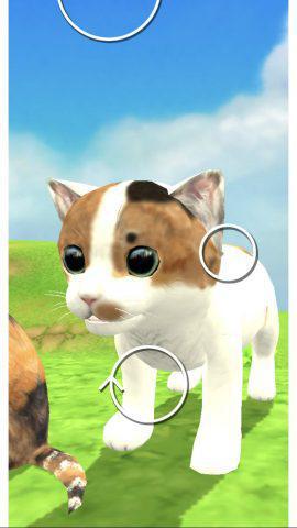 もはや攻略のコツというより猫のベストショットを撮ろうとしてる自分がいたな。.jpg