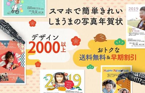 しまうま年賀状2019【評価3.5】