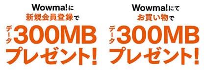 データ容量300MBがもらえる