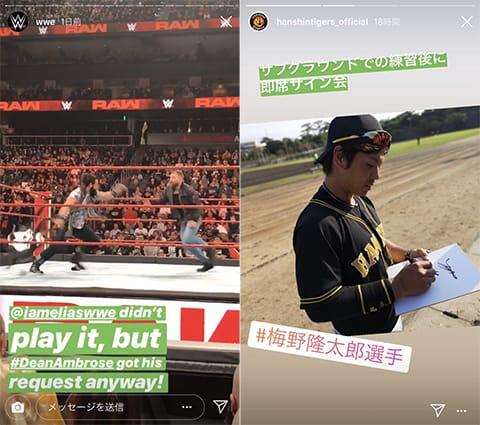 タイミング的に応援している人々のストーリーズがなかったので、プロレスの試合と、阪神タイガースの公式アカウントからご紹介