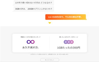 1GB300円で追加が可能!