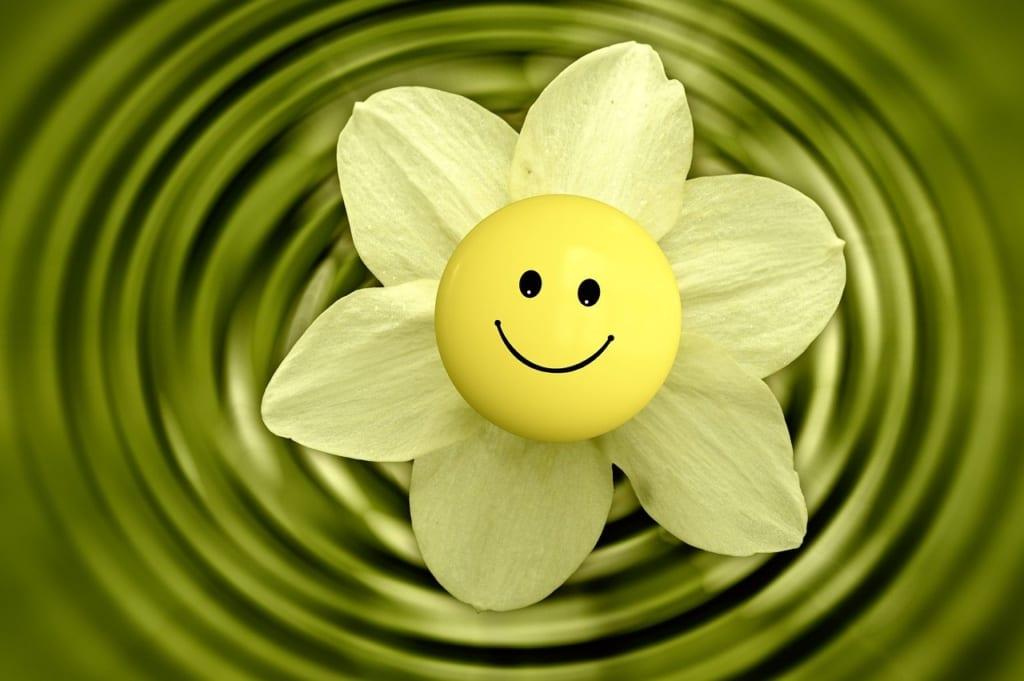 pixabay:geralt_blossom