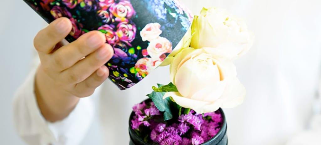 LIFULL FLOWER スタンダードプラン イメージ