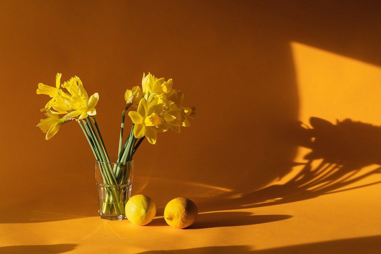 潤いを与えてくれる花生活をはじめよう♪「DILIGENCE PARLOUR」とは?